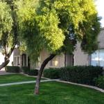 Chandler AZ Patio Homes with 2 Baths