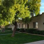 Chandler Arizona Patio Homes with Pool