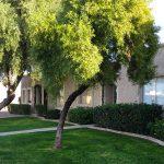Patio Homes in Queen Creek Arizona for $400,000