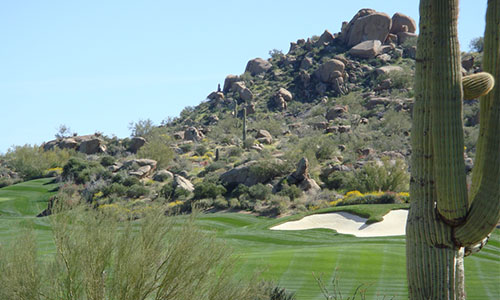 Southeast Phoenix Golf Homes for Sale