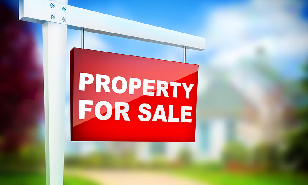 Homes for Sale in Palo Verde